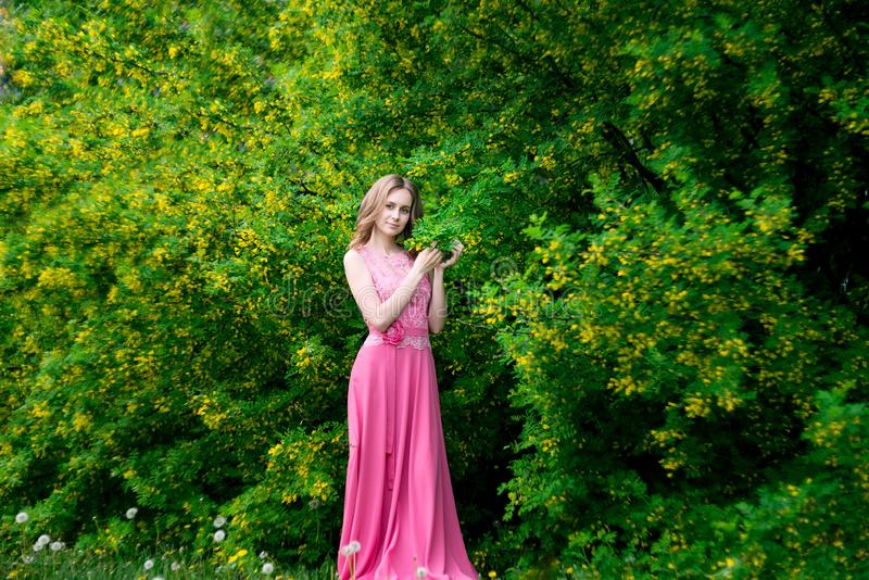 Woman in blooming yellow summer garden. Model royalty free stock photography