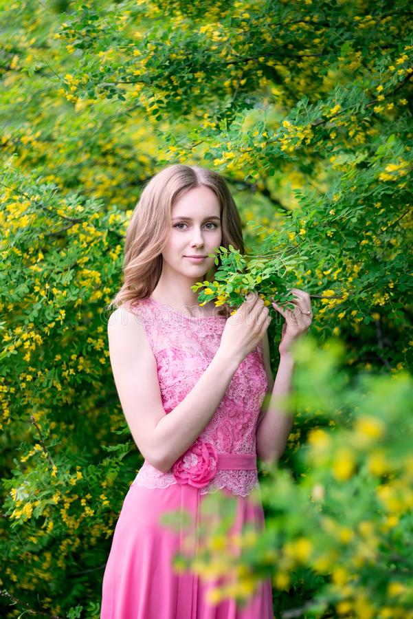 Woman in blooming yellow summer garden. Model royalty free stock image