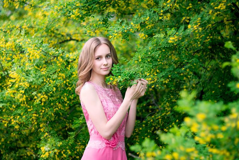 Woman in blooming yellow summer garden. Model royalty free stock photo