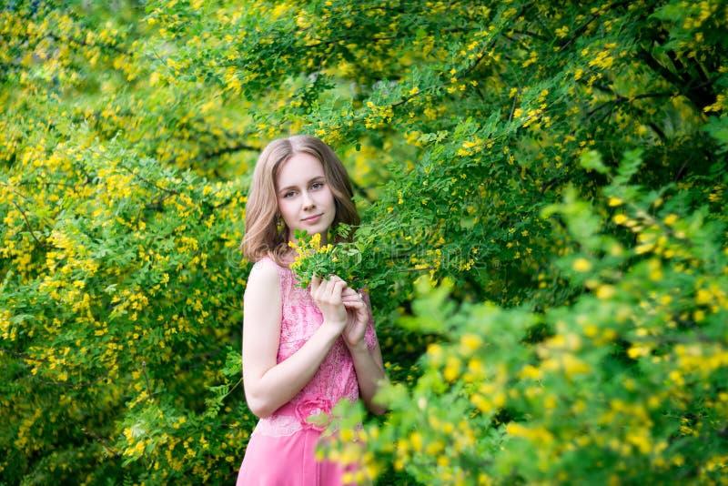 Woman in blooming yellow summer garden. Model stock photo