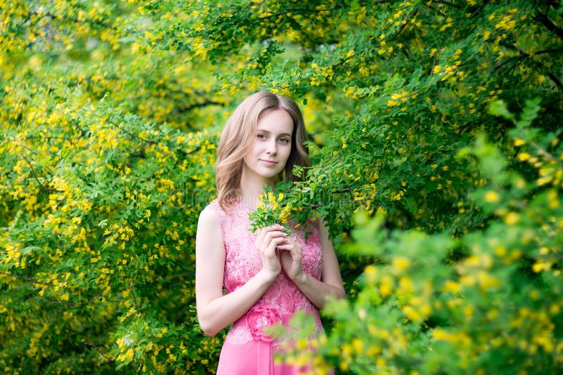 Woman in blooming yellow summer garden. Model stock image