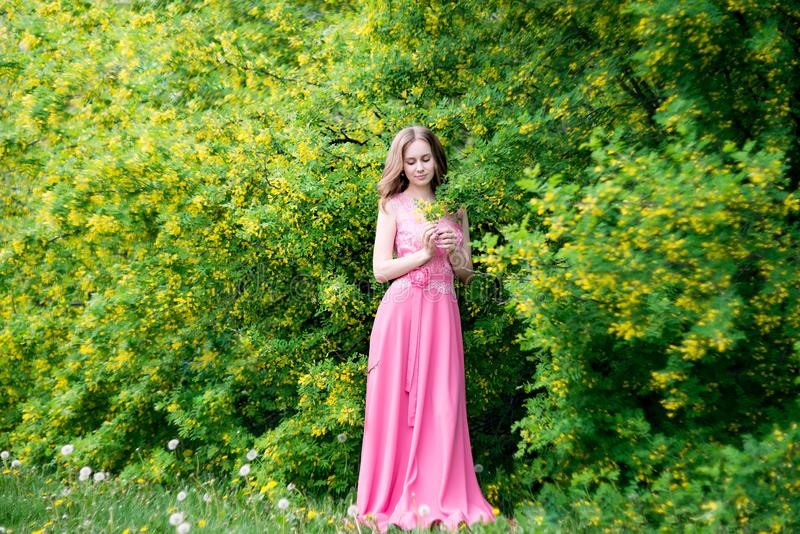 Woman in blooming yellow summer garden. Model stock photography