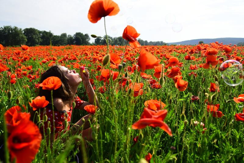 Woman blow bubble in poppy field, dreams, wishes. Summer, spring, poppy flower. Opium poppy, youth, freshness, ecology, woman. Drug opium narcotics royalty free stock images
