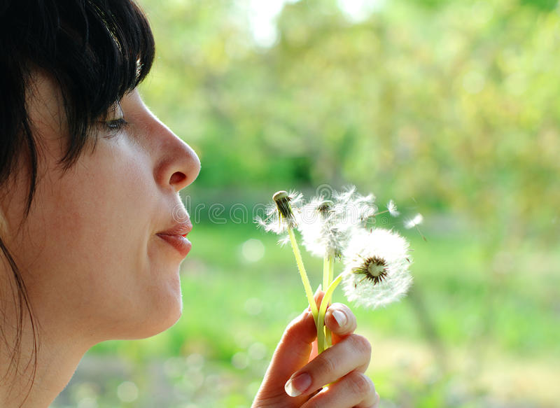 Woman blows up dandelion royalty free stock image