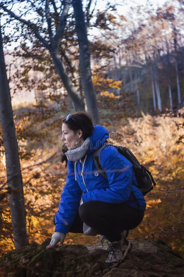 Woman in Blue and Gray Hoodie and Black Pants Sitting on Rock Formation Near Yellow Leaf Trees during Daytime royalty free stock image