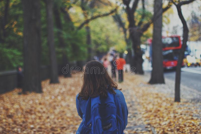 Woman With Blue Jansport Backpack Near Green Trees During Daytime Free Public Domain Cc0 Image