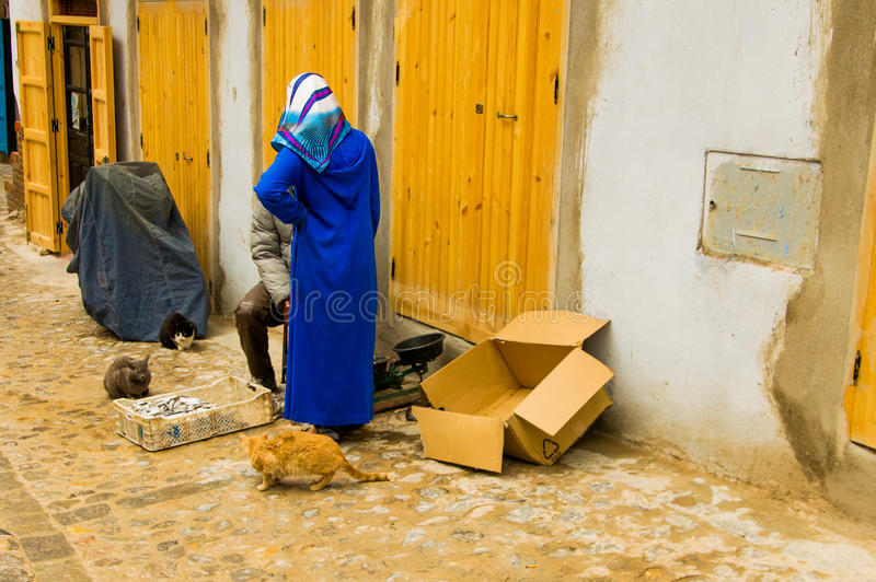 Woman with blue veil talking with a man in a street in marrakesh. A woman chats with a man in street in marrakesh with stray cats royalty free stock photo