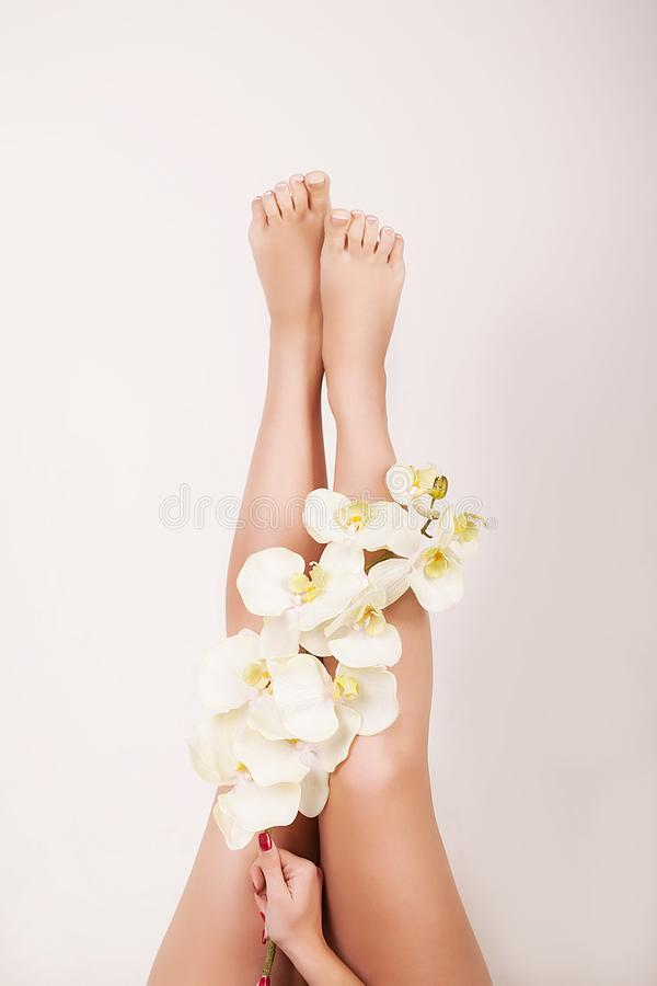 Woman Body Care. Close Up Of Long Female Legs With Perfect Smooth Soft Skin, Pedicure And Beautiful Hands With Natural Manicure, H royalty free stock photography