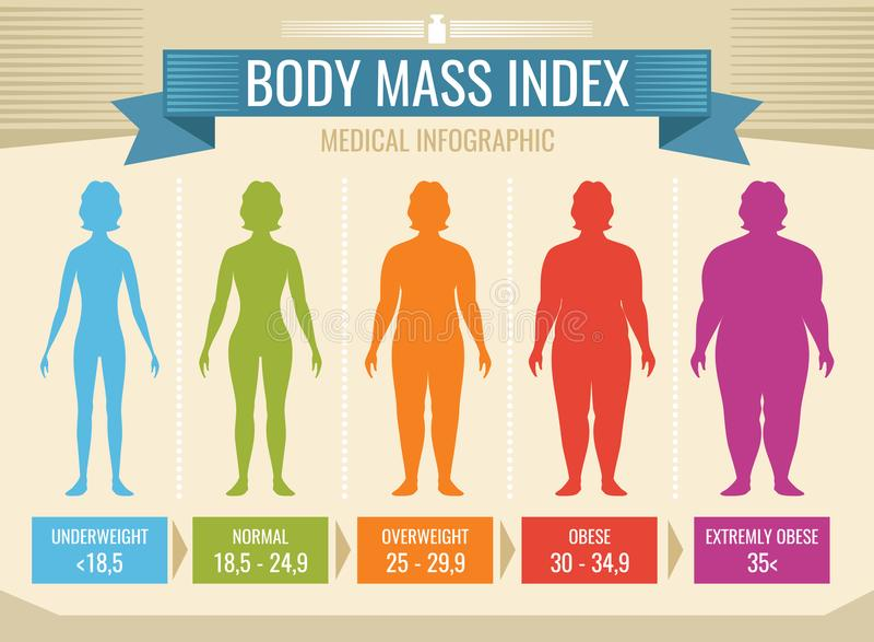 Woman body mass index vector medical infographic. Body mass index, obesity and overweight illustration vector illustration