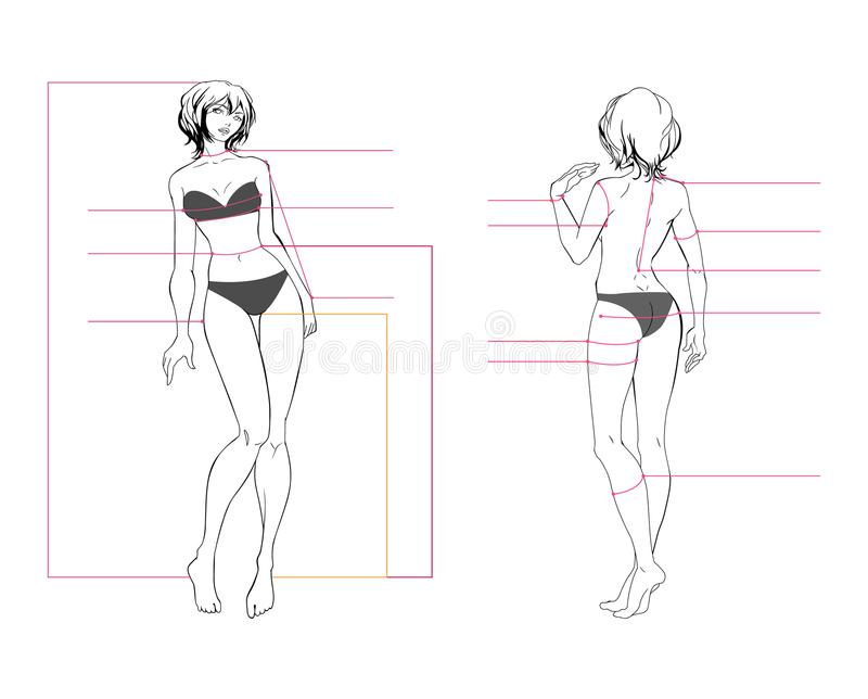 Woman body measurement chart. Scheme for measurement human body for sewing clothes. Female figure: front view, back view . Template for dieting, fitness. The vector illustration