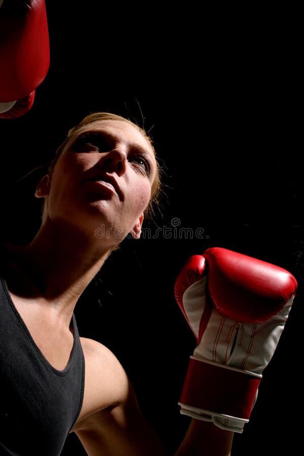 Woman Boxer 1 royalty free stock photos