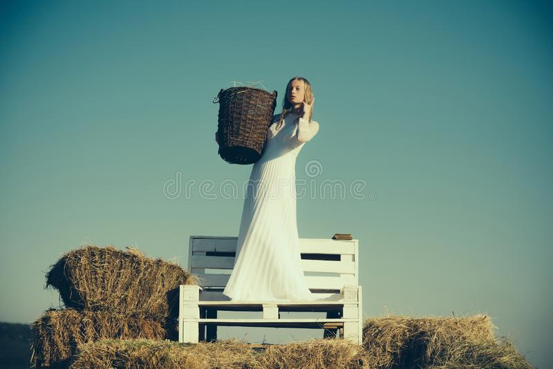 Woman bride in wedding dress on wooden bench. Albino girl hold wicker basket with hay on sunny outdoor picnic. Sexy royalty free stock photos