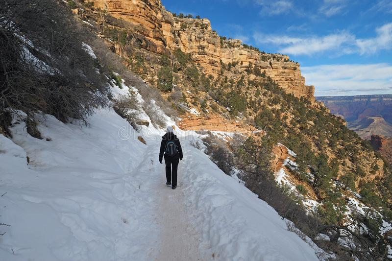 Woman on the Bright Angel Trail in the Grand Canyon in winter. Woman hiking on a snowy Bright Angel Trail in Grand Canyon National Park, Arizona, in winter royalty free stock photo