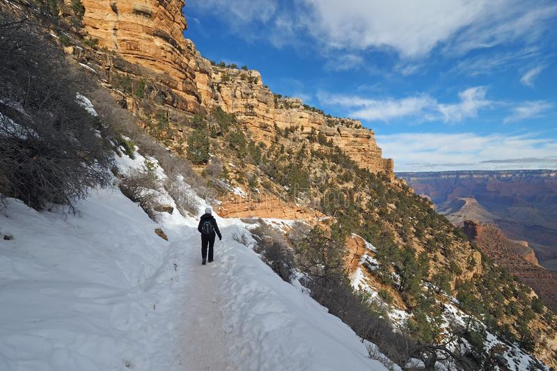 Woman on the Bright Angel Trail in the Grand Canyon in winter. Woman hiking on a snowy Bright Angel Trail in Grand Canyon National Park, Arizona, in winter royalty free stock photos