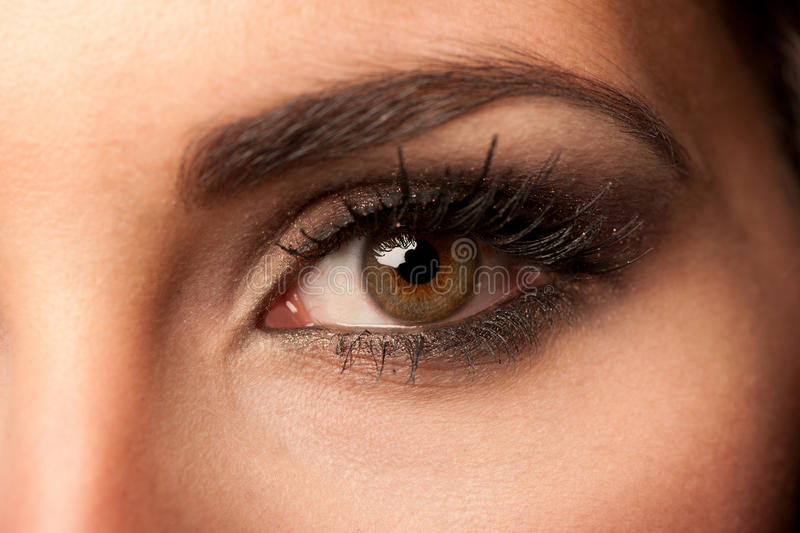 Woman brown eye with pastel color makeup stock image