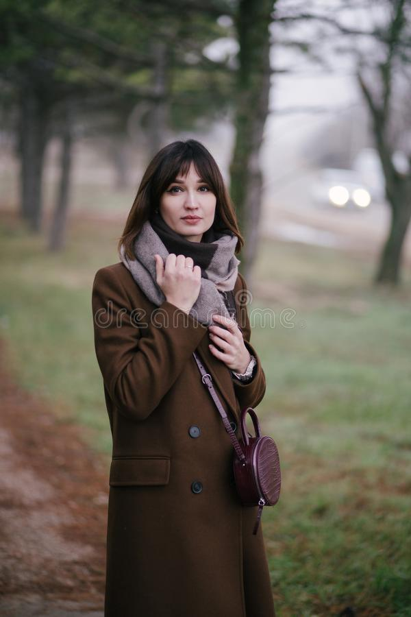 Woman in brown stylish cashmere posing on autumn background. Young beautiful woman in brown stylish cashmere posing on the autumn landscapes background stock photography