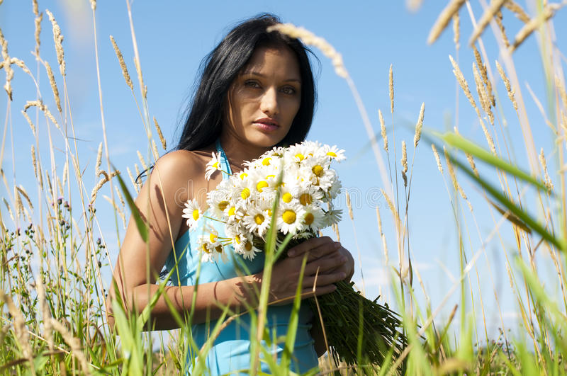 Download Woman with camomiles stock image. Image of brunette, flower - 10637669