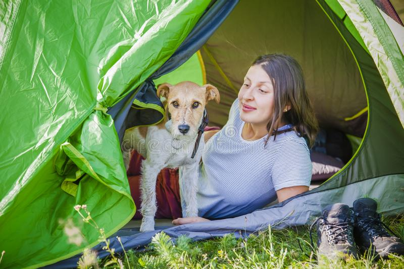 Woman camping with cute terrier dog in the mountains. Woman camping withcute terrier dog in the mountains stock images