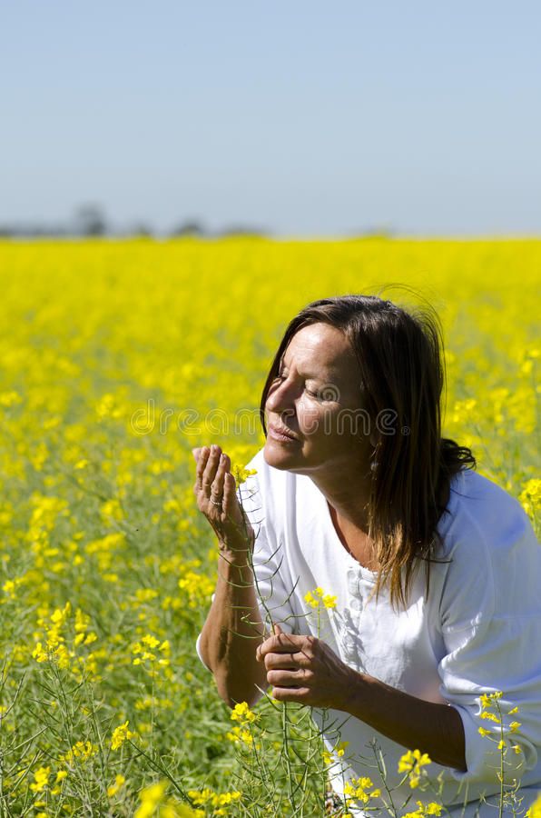 Woman in Canola Field stock images