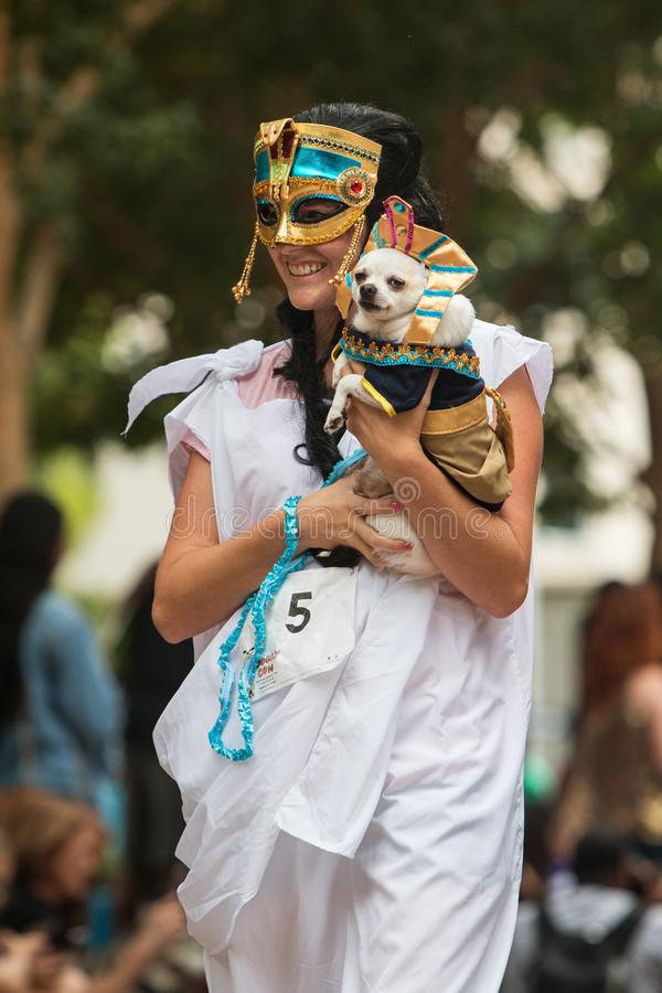 Woman Carries Dog Wearing Pharaoh Costume At Atlanta Doggy Con stock image