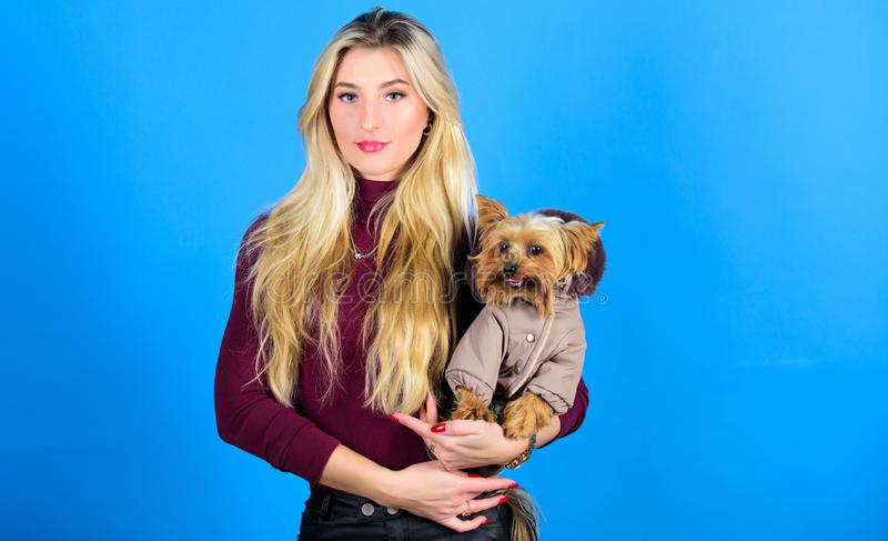 Woman carry yorkshire terrier. Dogs need clothes. Girl adorable blonde hug little dog in coat. Apparel and accessories. Pet supplies. Dressing dog for cold stock photography