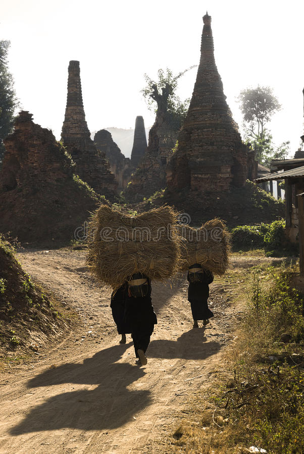 Woman carrying hay. Hay carrying women in front of abandoned stupas, Inle Lake, Myanmar stock photos