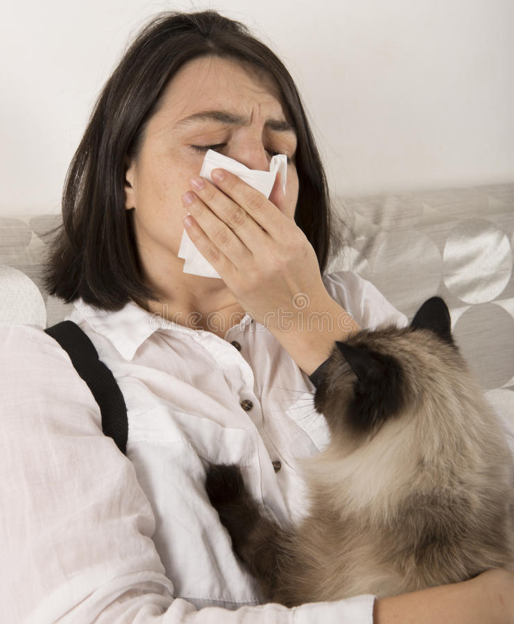 Woman with cat allergy royalty free stock photography