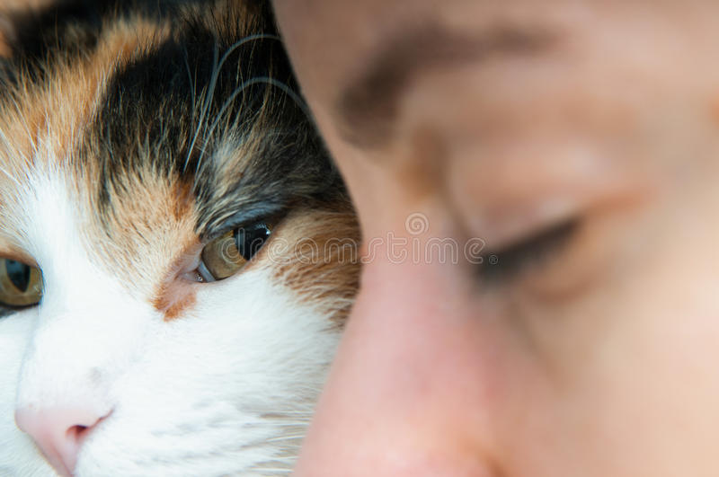 Woman and cat portrait stock images