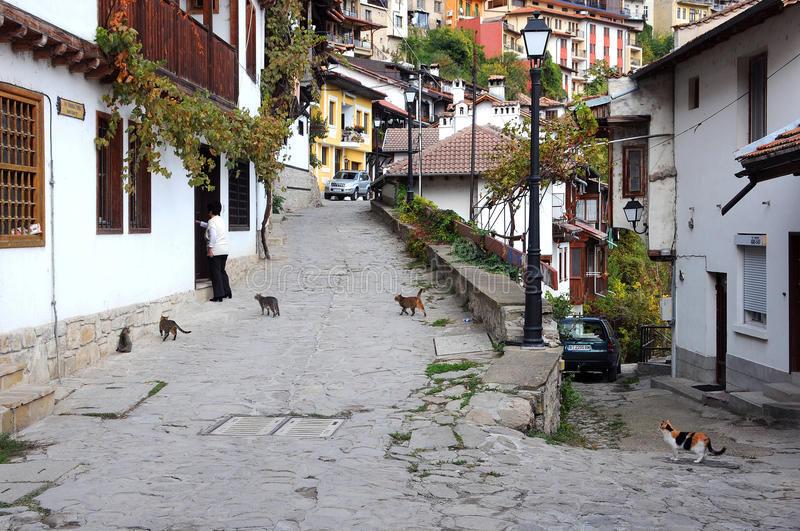 Woman and Cats in Gurko Street. Woman and hungry stray cats in General Gurko street in Veliko Tarnovo, Bulgaria, on October 20, 2016 royalty free stock photos