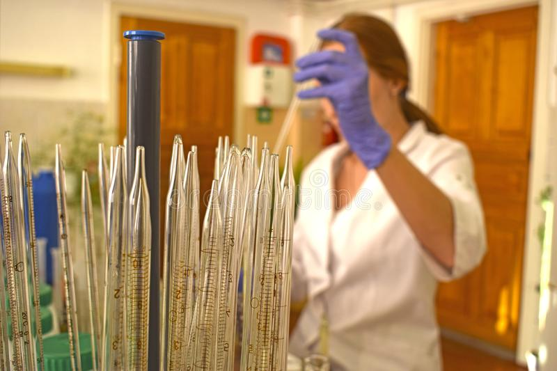 A woman in a chemical laboratory conducts experiments. Against the background of glass flasks and test tubes royalty free stock images