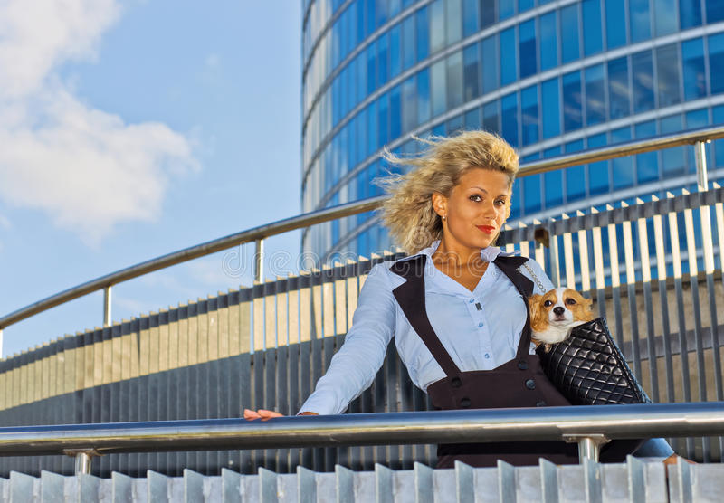 Download Woman With Chihuahua. Stock Photo - Image: 24132520