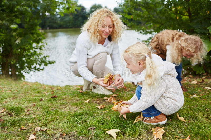 Woman and children collecting leaves stock photos