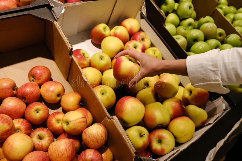 Woman chooses apples in the store. counter in apples in a supermarket stock photography