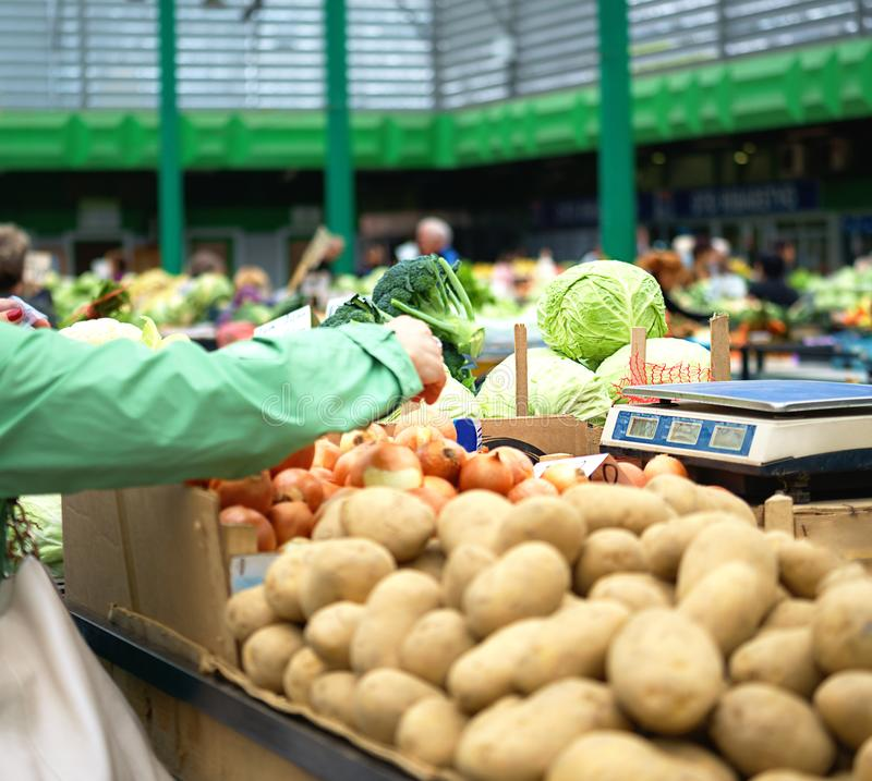 Woman chooses in the market onions. Sales of fresh and organic fruits and vegetables at the green market or farmers market. stock photos