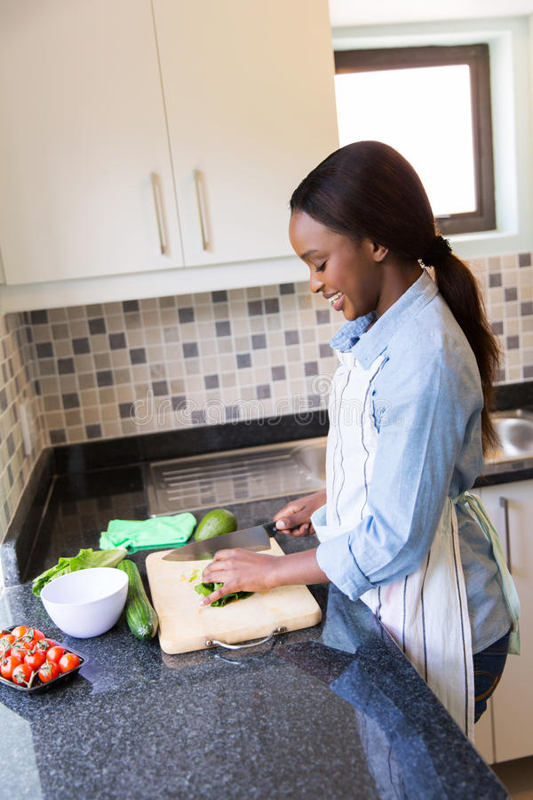 Woman chopping vegetables stock photography