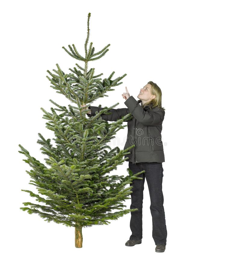 Woman and christmas tree. Young woman and christmas tree in white back stock photos