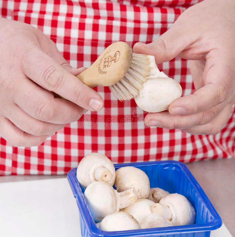 Woman cleaning mushrooms with vegetable brush. royalty free stock image