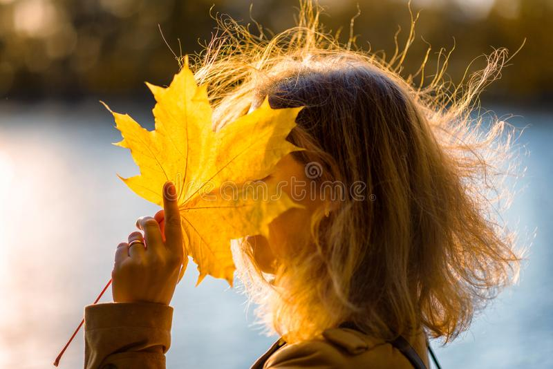 Woman closes her face with yellow leaf in autumn forest at sunset. Beautiful fall nature royalty free stock photos