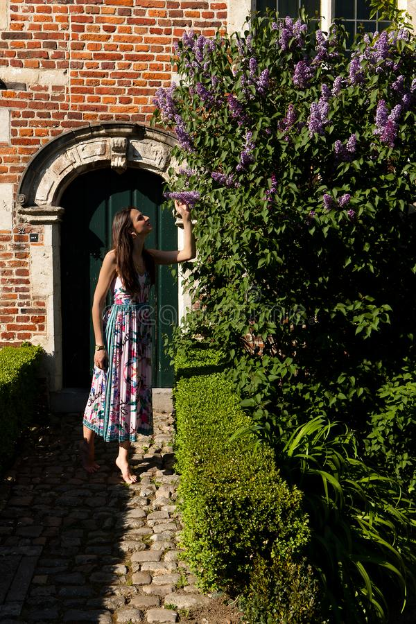 Woman sun lilac syringa wall door, Groot Begijnhof, Leuven, Belgium. Woman in colorful summer dress looking at lilac or syringa flowers on the coble stone in stock images