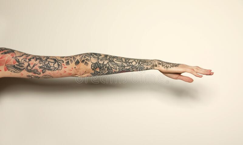 Woman with colorful tattoos on arm against background, closeup. Woman with colorful tattoos on arm against white background, closeup royalty free stock image