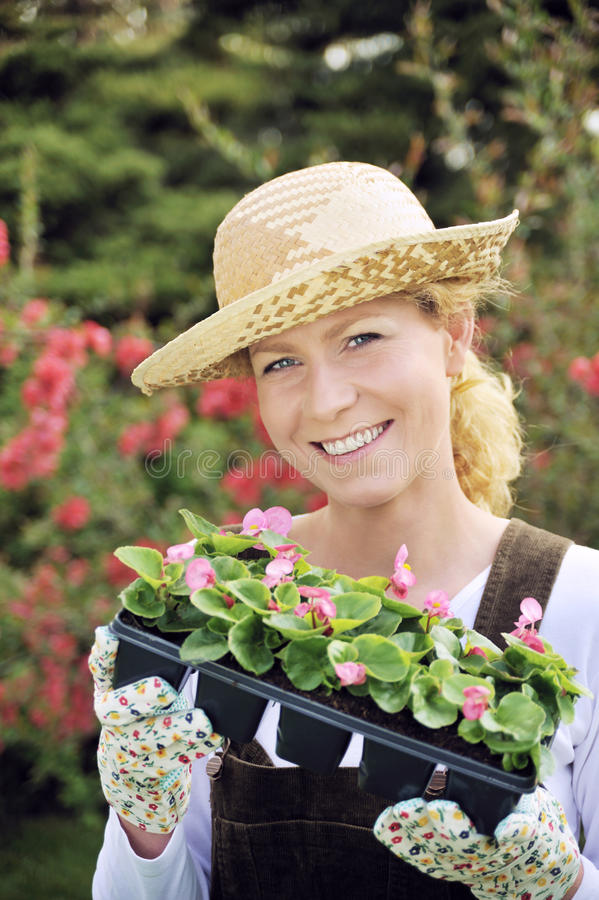 Woman with container-grown plants royalty free stock images