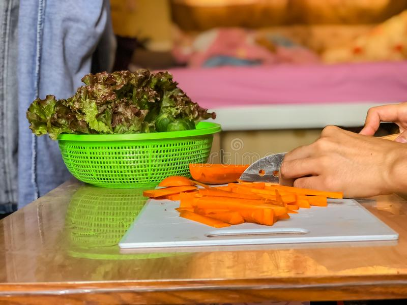 Woman cooking salad,human hands chopping vegetable,vegetarian,carrot,cucumber and red coral lettuce ,home cooking,healthy concept,. Preparation of food royalty free stock images