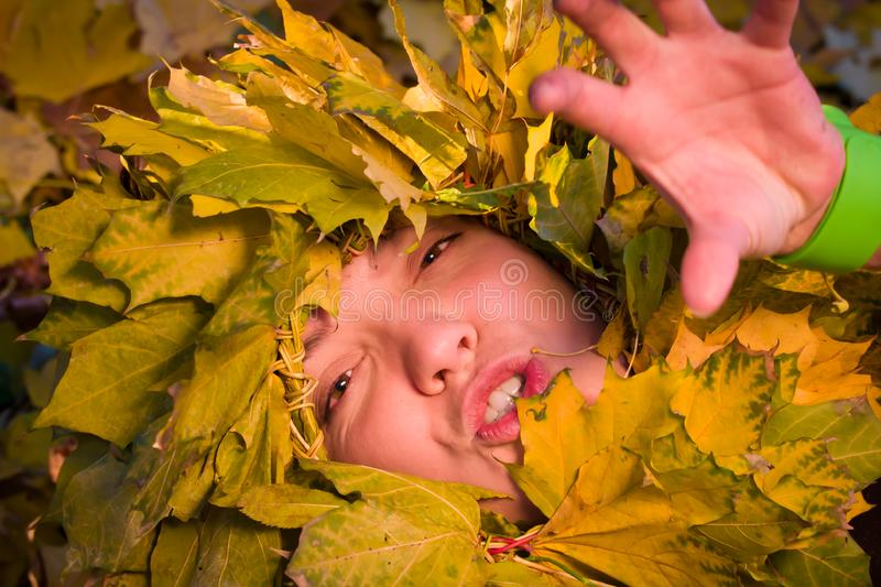 Download Woman Covered By Autumnal Leaves Stock Image - Image of circle, girl: 16817247