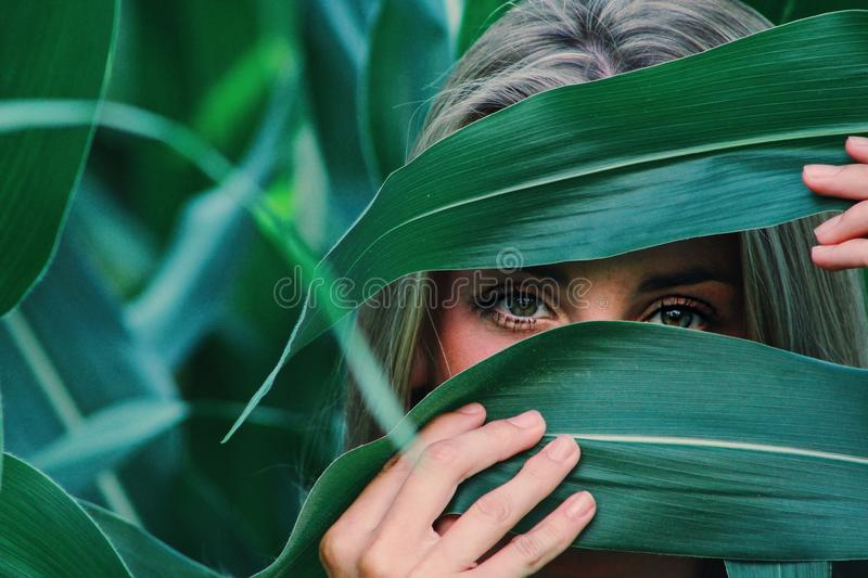 Woman Covering Her Face With Corn Leaves stock photography