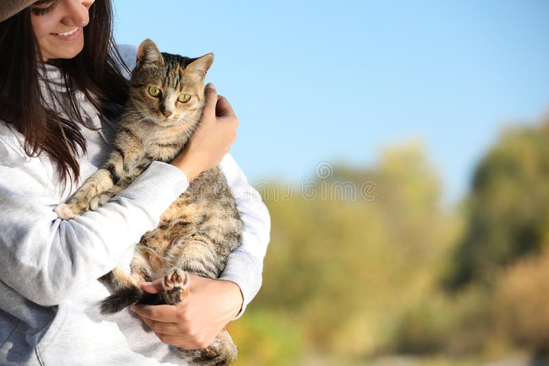 Woman with cute cat outdoors stock images