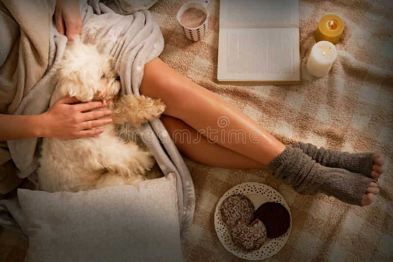 Woman lying on bed with dog stock images