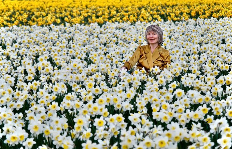 Woman in daffodil fields smiling. stock photos