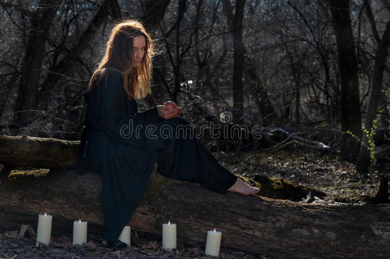 Woman with dark long hair in black robes surrounded by white burning candles sitting on a tree trunk in the forest. Back to Nature royalty free stock image