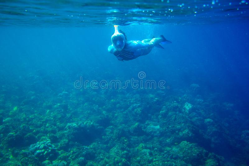 Woman dives in coral reef. Girl snorkeling in full-face mask. Snorkel person underwater photo. Snorkeling mask undersea royalty free stock photos