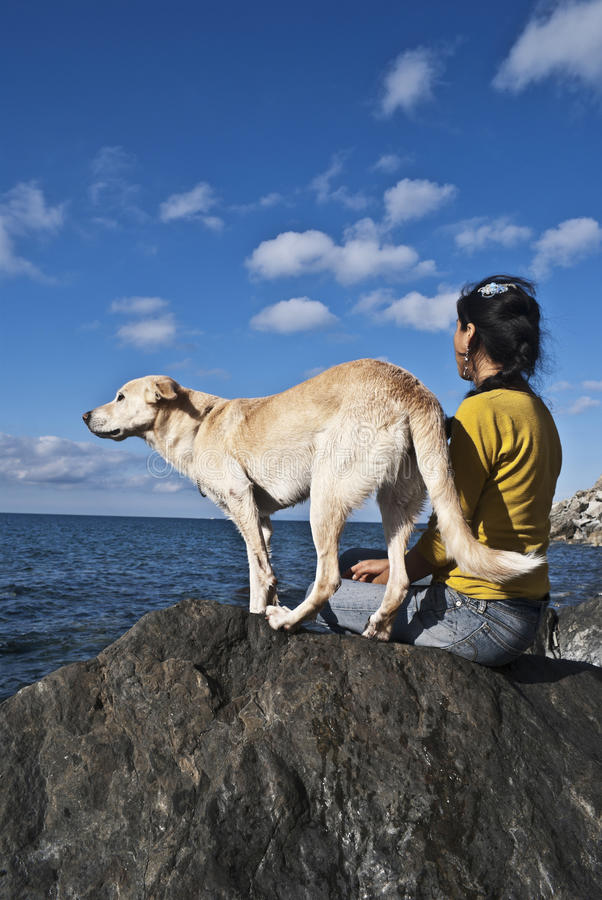 Download Woman and dog stock photo. Image of inner, watch, animal - 27943446